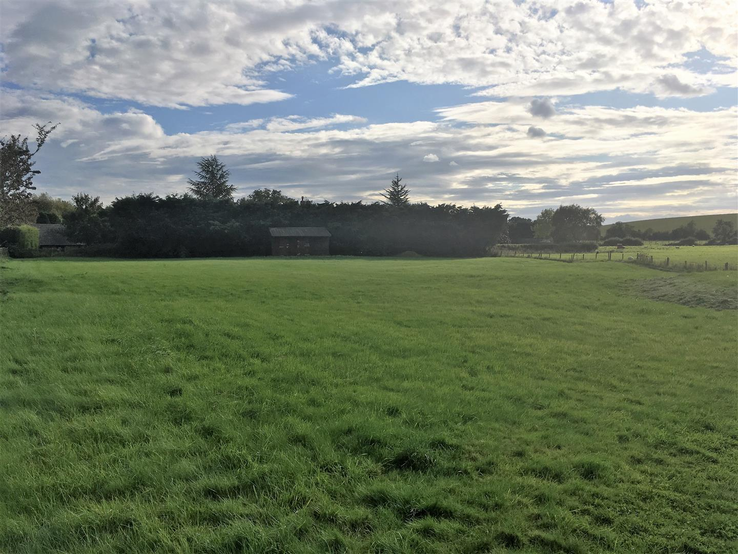 1 acre pasture at Chesterton with stable