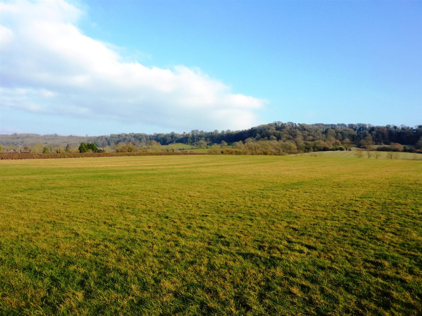 20 acres pasture at Radway
