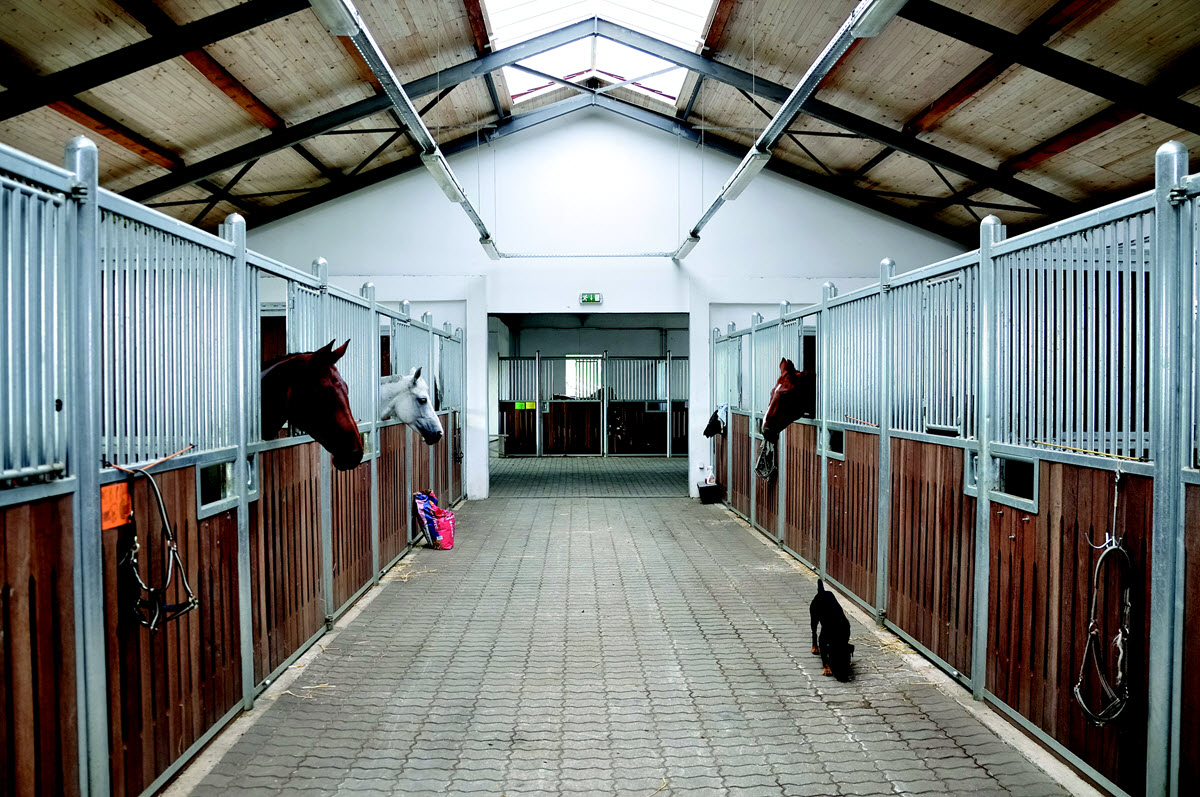 large modern horse stables